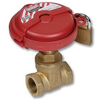 1707 - WaterMarked Gate Valve F&F c/w Locking Mechanism