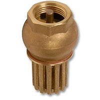 1510 - Brass Foot Valve